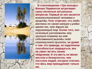 В стихотворении «Три пальмы» Михаил Лермонтов затрагивает сразу несколько ак