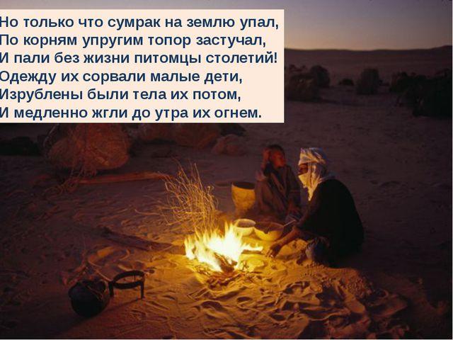 Но только что сумрак на землю упал, По корням упругим топор застучал, И пали...