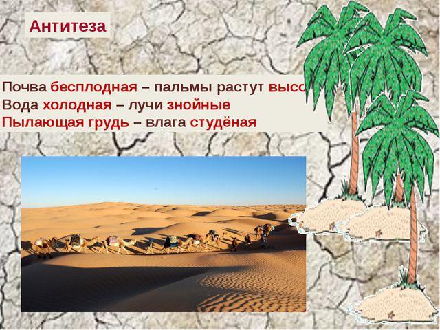 Антитеза Почва бесплодная – пальмы растут высоко Вода холодная – лучи знойны...