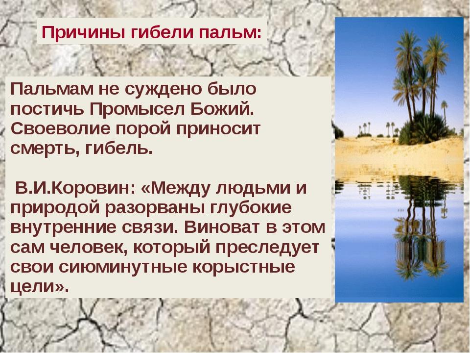 Причины гибели пальм: Пальмам не суждено было постичь Промысел Божий. Своево...