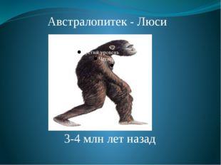 Австралопитек - Люси 3-4 млн лет назад Африканский австралопитек. 3-4 млн лет