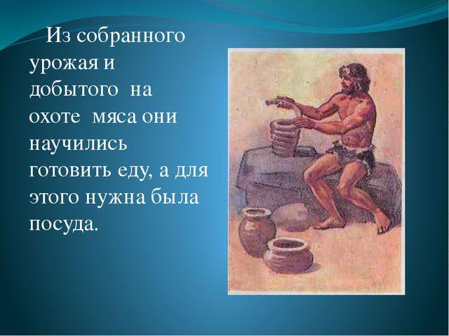 Из собранного урожая и добытого на охоте мяса они научились готовить еду, а...