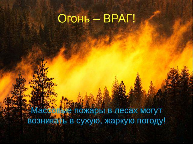 Огонь – ВРАГ! Массовые пожары в лесах могут возникать в сухую, жаркую погоду!