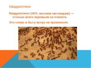 Квадриллион Квадриллион (1015, миллион миллиардов) — столько всего муравьев н