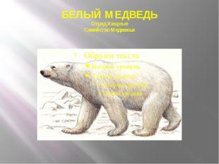 БЕЛЫЙ МЕДВЕДЬ Отряд Хищные Семейство Медвежьи