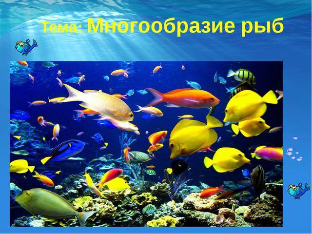 Тема: Многообразие рыб