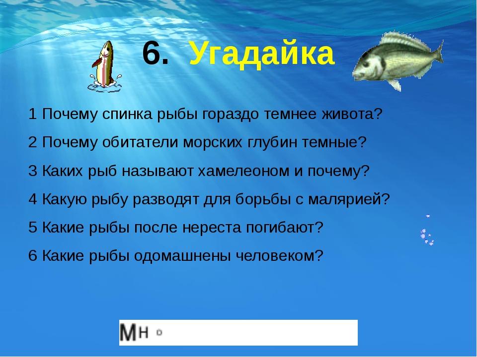 6. Угадайка 1 Почему спинка рыбы гораздо темнее живота? 2 Почему обитатели мо...