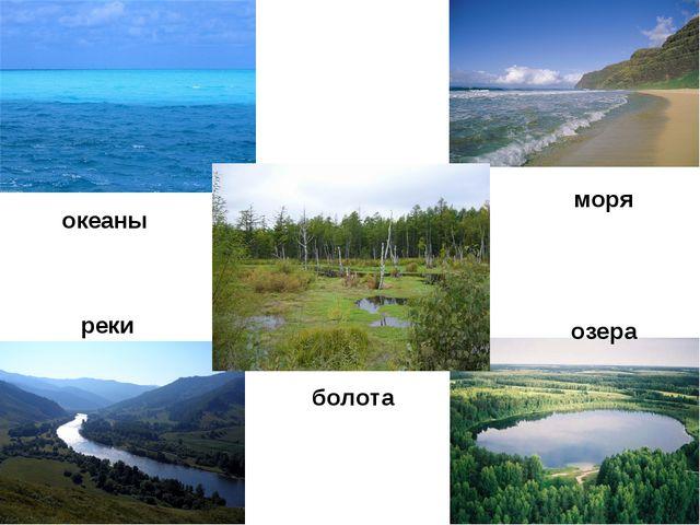 океаны моря болота реки озера