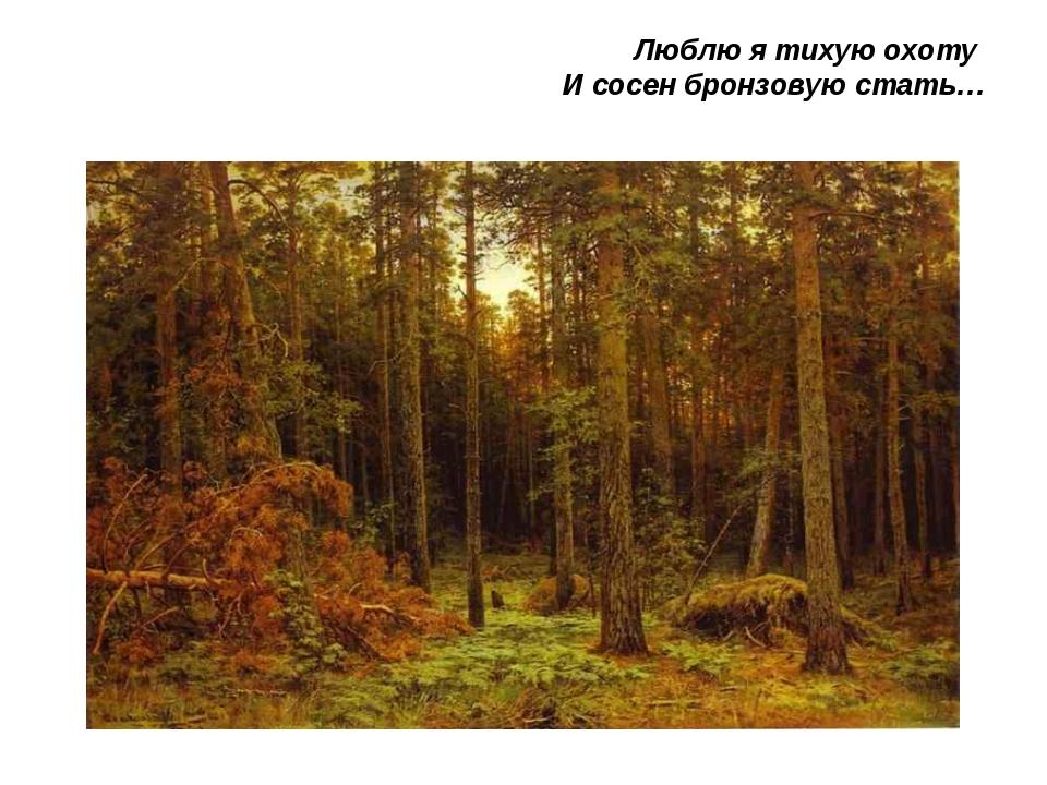 Люблю я тихую охоту И сосен бронзовую стать…