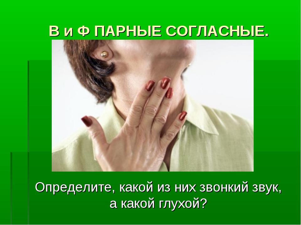 В и Ф ПАРНЫЕ СОГЛАСНЫЕ. Определите, какой из них звонкий звук, а какой глухой?