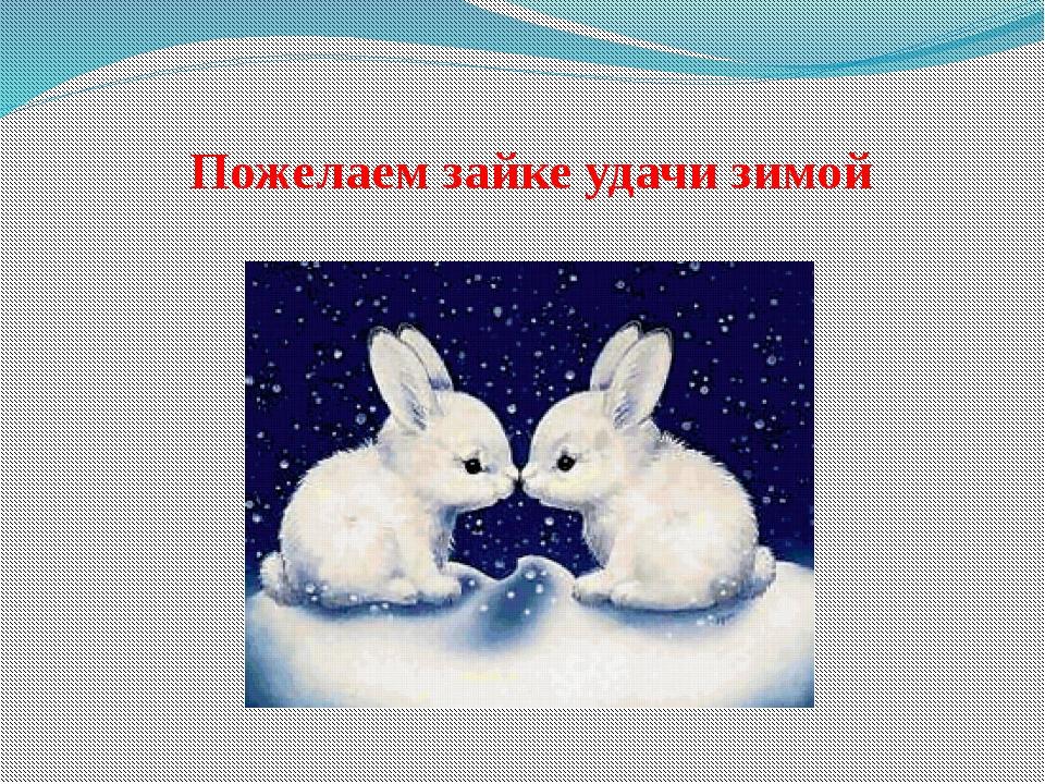 Пожелаем зайке удачи зимой