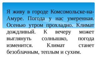 Я живу в городе Комсомольске-на-Амуре. Погода у нас умеренная. Осенью утром п
