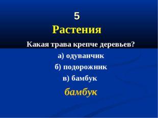 5 Растения Какая трава крепче деревьев? а) одуванчик б) подорожник в) бамбук