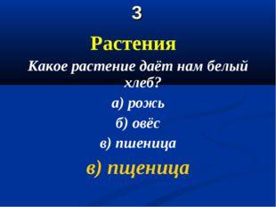 3 Растения Какое растение даёт нам белый хлеб? а) рожь б) овёс в) пшеница в)
