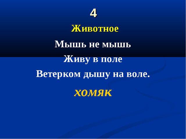 4 Животное Мышь не мышь Живу в поле Ветерком дышу на воле. хомяк