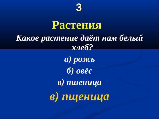 3 Растения Какое растение даёт нам белый хлеб? а) рожь б) овёс в) пшеница в)...