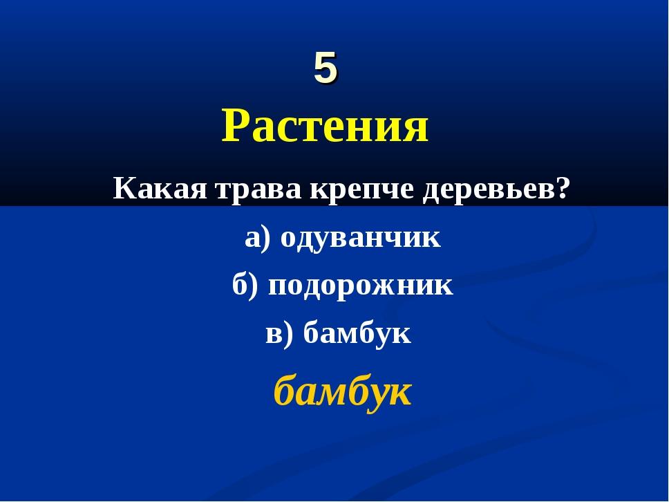 5 Растения Какая трава крепче деревьев? а) одуванчик б) подорожник в) бамбук...