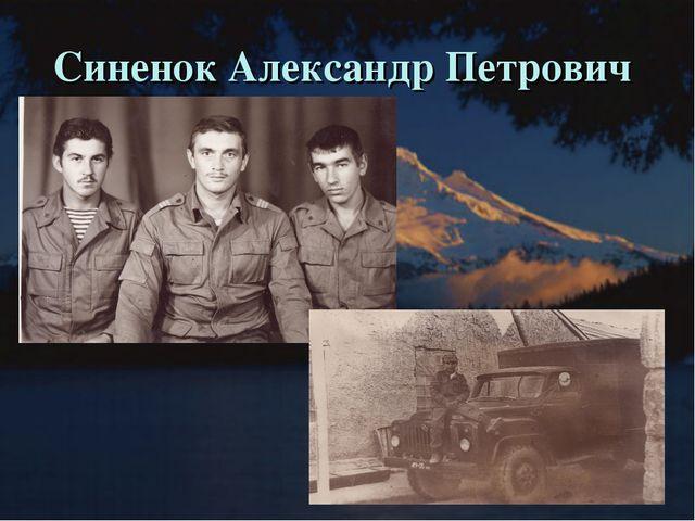 Синенок Александр Петрович