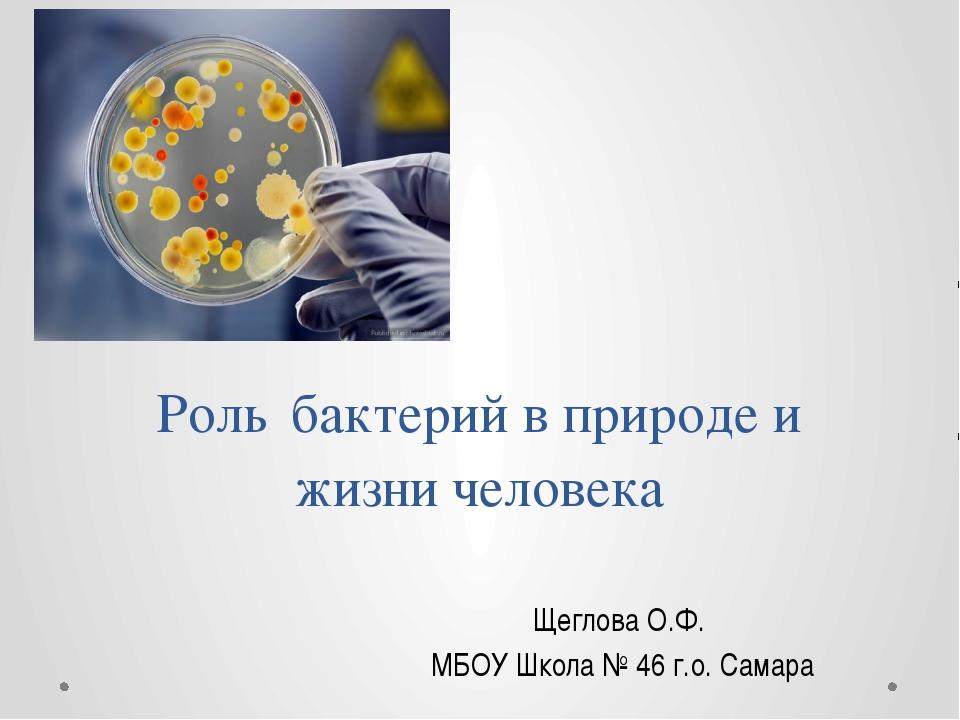 Роль бактерий в природе и жизни человека Щеглова О.Ф. МБОУ Школа № 46 г.о. Са...