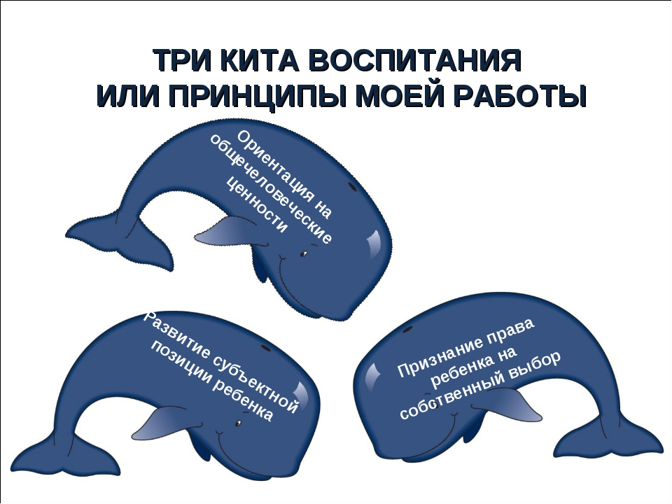 Ориентация на общечеловеческие ценности Развитие субъектной позиции ребенка П...