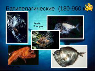 Батипелагические (180-960 м) Рыба - Топорик Удильщик Хаулиод