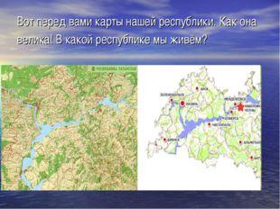 Вот перед вами карты нашей республики. Как она велика! В какой республике мы