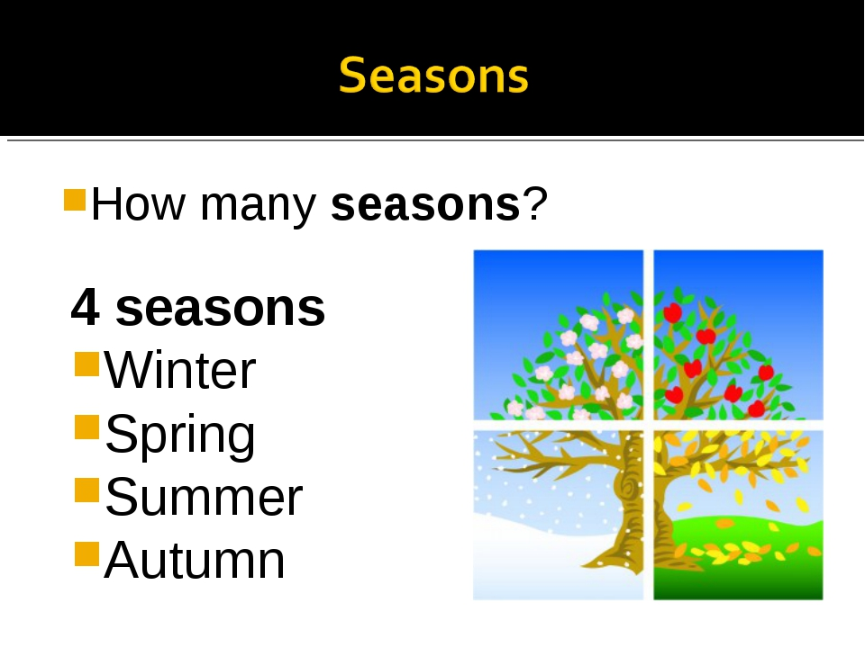 How many seasons? 4 seasons Winter Spring Summer Autumn