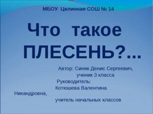 Автор: Синяк Денис Сергеевич, ученик 3 класса Руководитель: Котюшева Валенти