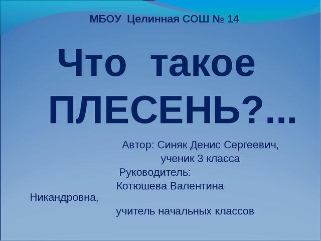 Автор: Синяк Денис Сергеевич, ученик 3 класса Руководитель: Котюшева Валенти...