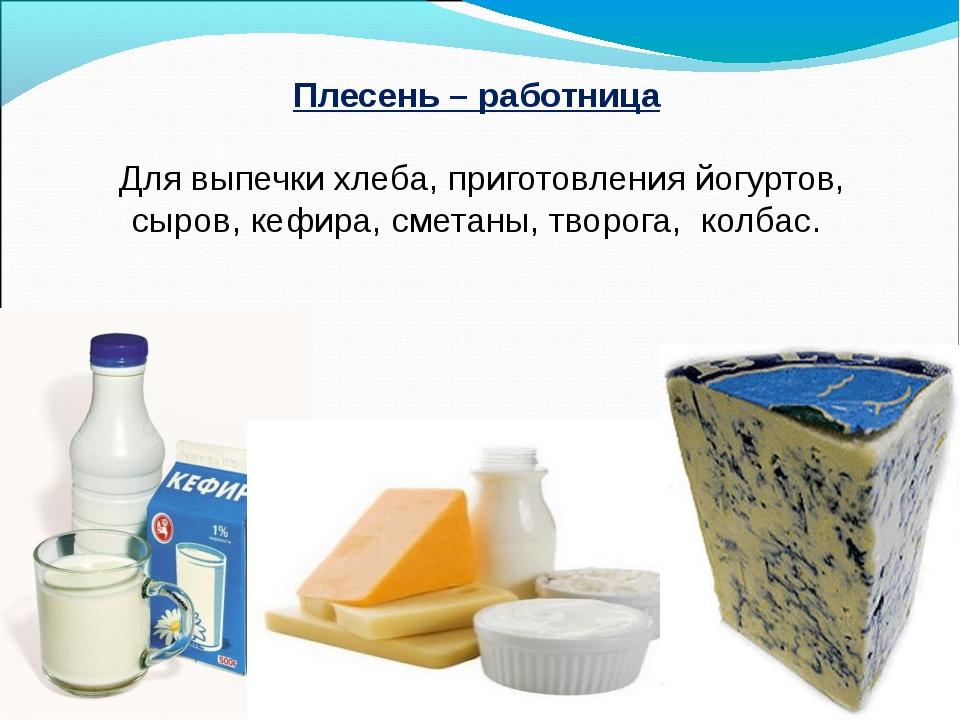 Плесень – работница Для выпечки хлеба, приготовления йогуртов, сыров, кефира,...
