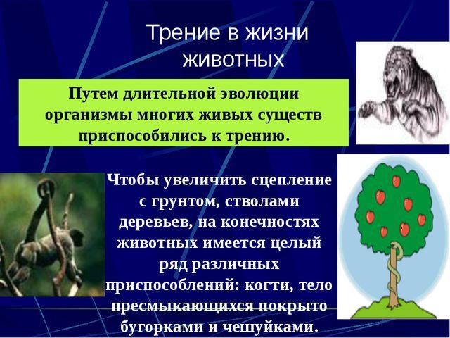 Трение в жизни животных Путем длительной эволюции организмы многих живых суще...