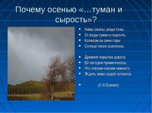 Почему осенью «…туман и сырость»? Нивы сжаты, рощи голы, От воды туман и сыро