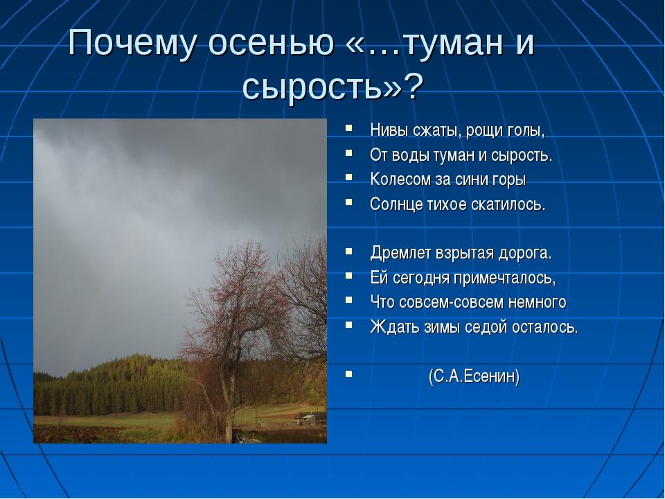 Почему осенью «…туман и сырость»? Нивы сжаты, рощи голы, От воды туман и сыро...