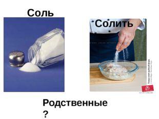 Соль Солить Родственные?