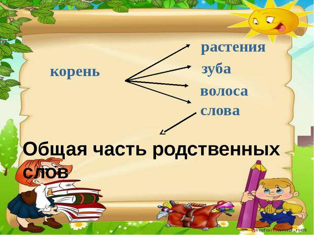 корень волоса зуба растения слова Общая часть родственных слов