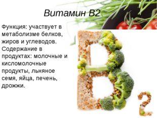 Витамин B2 Функция: участвует в метаболизме белков, жиров и углеводов. Содерж