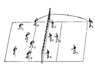 В волейбол играют две команды на специальной площадке, которая разделена сетк