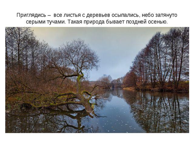 Приглядись – все листья с деревьев осыпались, небо затянуто серыми тучами. Та...
