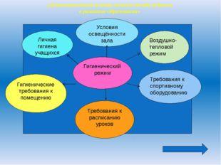 Гигиенический режим Личная гигиена учащихся Условия освещённости зала Воздуш