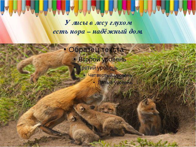 У лисы в лесу глухом есть нора – надёжный дом.