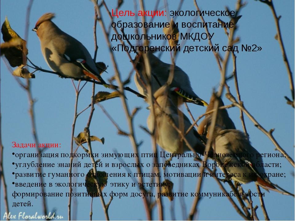 Задачи акции: организация подкормки зимующих птиц Центрально-Чернозёмного рег...