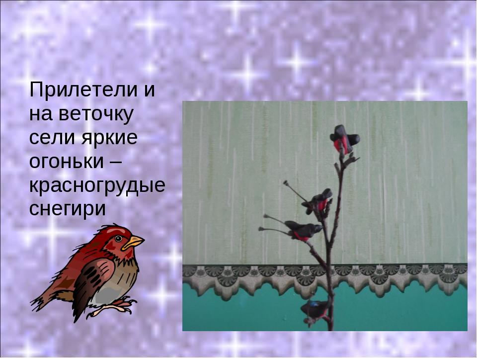 Прилетели и на веточку сели яркие огоньки – красногрудые снегири