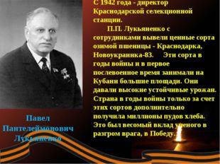 Павел Пантелеймонович Лукьяненко С 1942 года - директор Краснодарской селекци