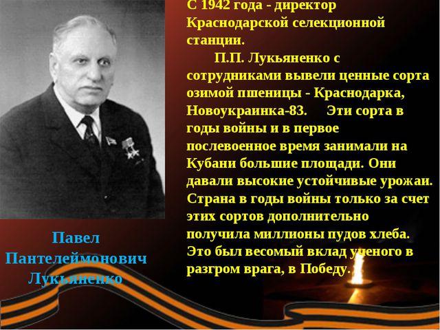Павел Пантелеймонович Лукьяненко С 1942 года - директор Краснодарской селекци...