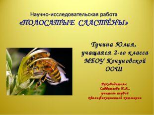 Тучина Юлия, учащаяся 2-го класса МБОУ Кочуновской ООШ Руководитель: Саввате