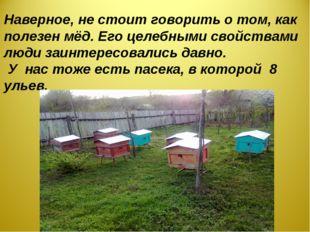 Наверное, не стоит говорить о том, как полезен мёд. Его целебными свойствами