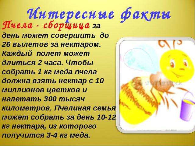 Интересные факты Пчела - сборщица за день может совершить до 26 вылетов за не...