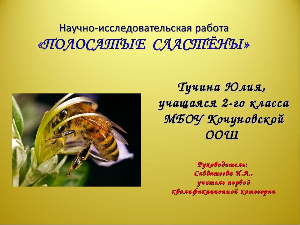 Тучина Юлия, учащаяся 2-го класса МБОУ Кочуновской ООШ Руководитель: Саввате...