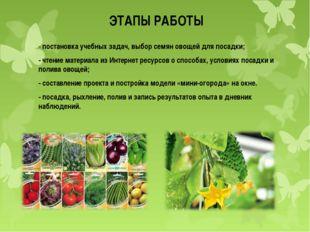 ЭТАПЫ РАБОТЫ - постановка учебных задач, выбор семян овощей для посадки; - чт
