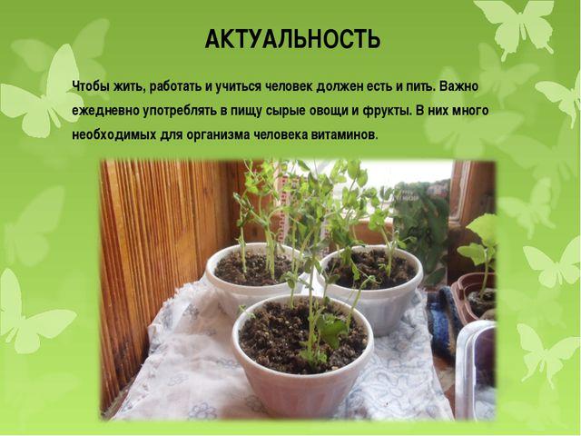 АКТУАЛЬНОСТЬ Чтобы жить, работать и учиться человек должен есть и пить. Важно...